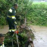 20120612_hochwassereinsaetze