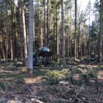 20200405 Waldbrand Burgholz